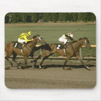 Horses 80 Mousepad