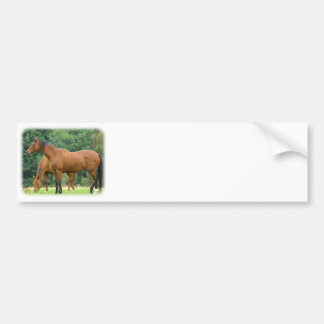 Horses 9A81D-10 Car Bumper Sticker