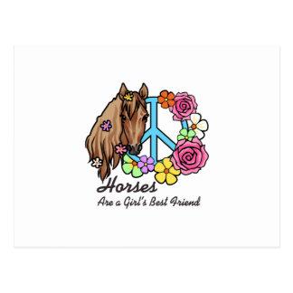 Horses A Girls Best Friend Postcard