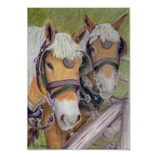 Horses - A Matched Pair Poster