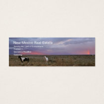 Horses After the Storm Mini Business Card