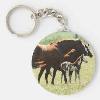 Horses and Foal Picture Keychain