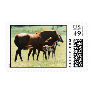 Horses and Foal Picture Postage