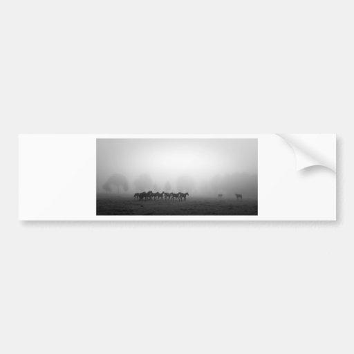 Horses and fog bumper sticker