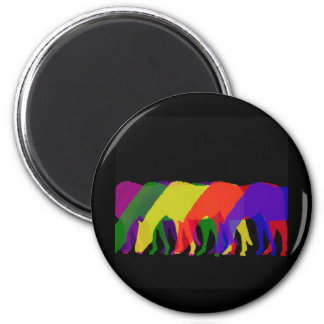 horses and horses in 6 bright colors - graphic magnet