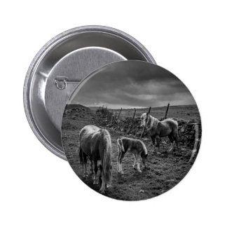 Horses and Pony Button Badge