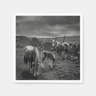 Horses and Pony Paper Napkins