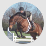 Horses and Show Jumping Stickers