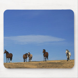 Horses and Sky Mouse Pad