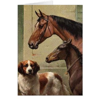 Horses and St Bernard Vintage Art Greeting Cards