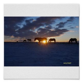 Horses are from Heaven Posters