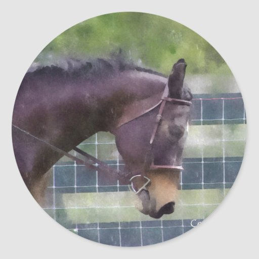 Horses are magic round sticker