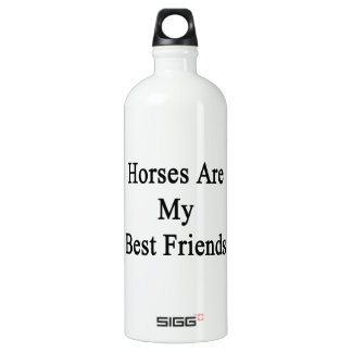 Horses Are My Best Friends SIGG Traveler 1.0L Water Bottle