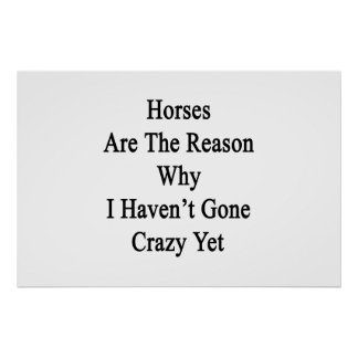 Horses Are The Reason Why I Haven t Gone Crazy Yet Posters