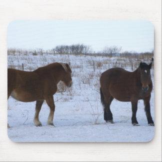 Horses at Cape Kiritappu, Hokkaido Prefecture, Mouse Pad