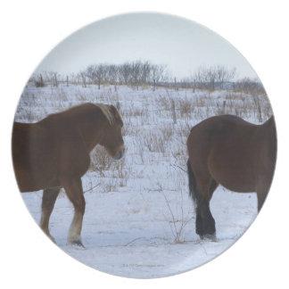 Horses at Cape Kiritappu, Hokkaido Prefecture, Plate