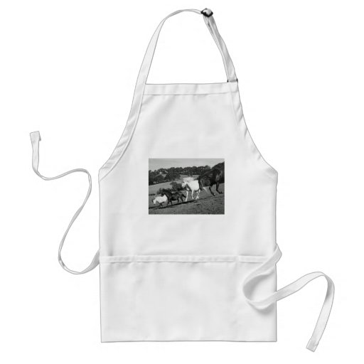 Horses At Play Apron