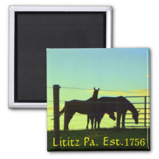 Horses at Sunset in Lititz Pa. Magnet