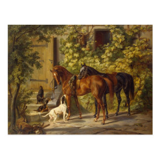 Horses at the Porch Postcard