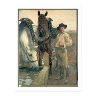Horses at the Water Trough, 1884 (oil on canvas) Postcard