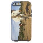 Horses, Aude, Languedoc-Roussillon, France iPhone 6 Case