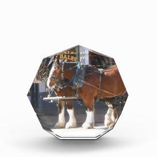 Horses Acrylic Award