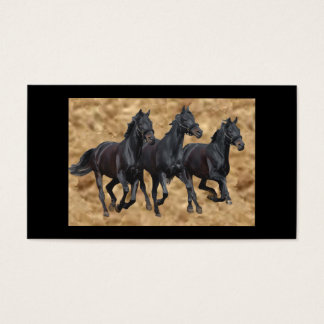 Horses Black Beauties Business Card