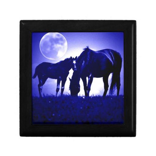 Horses & Blue Night Gift Boxes