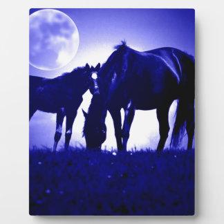 Horses & Blue Night Display Plaques
