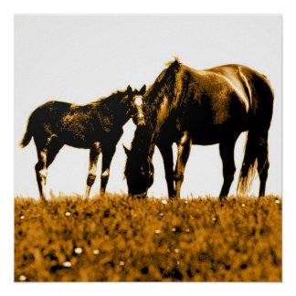 Horses Brown Yellow Pop Art Square Poster