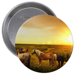 Horses 4 Inch Round Button