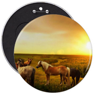 Horses 6 Inch Round Button