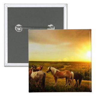 Horses 2 Inch Square Button