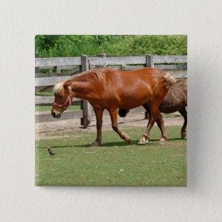 Horses Button Badge