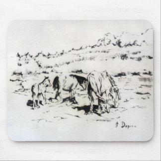 Horses/Cabalos/Horses Mouse Pad