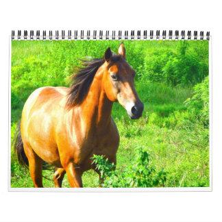 Horses Calendar
