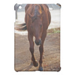 Horses coming home cover for the iPad mini