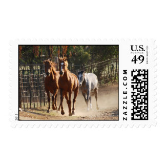 Horses coming home postage