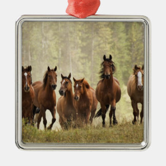 Horses cresting small hill during roundup, 2 metal ornament