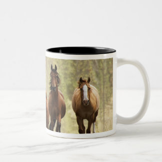 Horses cresting small hill during roundup 2 mugs