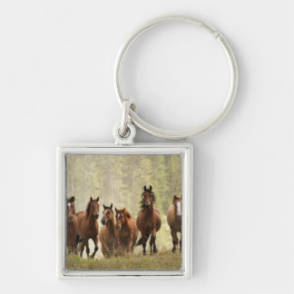 Horses cresting small hill during roundup, 2 Silver-Colored square keychain