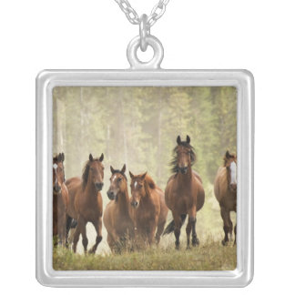 Horses cresting small hill during roundup, 2 silver plated necklace