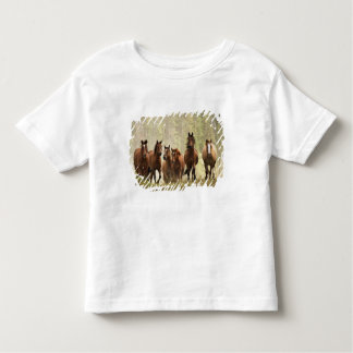 Horses cresting small hill during roundup, 2 toddler t-shirt