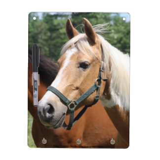 Horses Dry-Erase Board