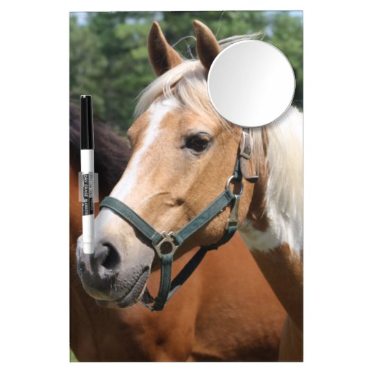 Horses Dry Erase Board With Mirror