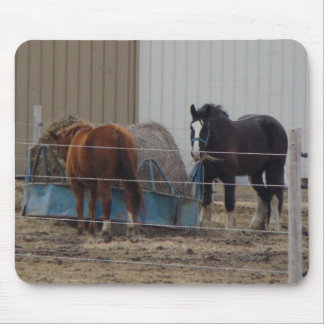 Horses Eating Hay 2 Mouse Pad