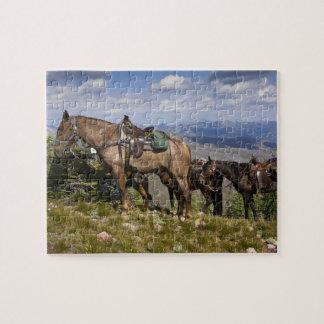 Horses (Equus ferus caballus) at scenic overview Jigsaw Puzzle