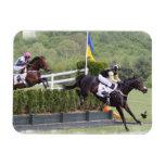 Horses Eventing  Premium Magnet Vinyl Magnet