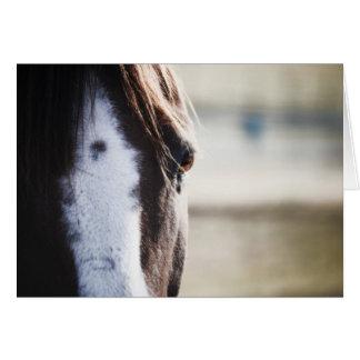Horses Eye Blank Inside Card