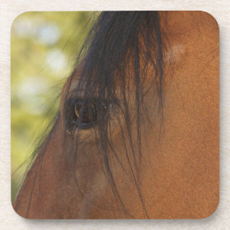Horse's Eye Horse-lover Equine Coasters